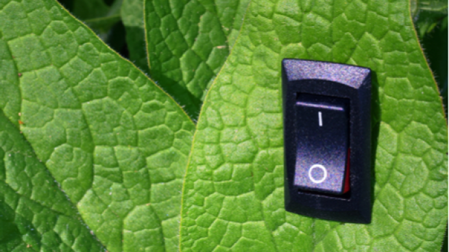 Green leaf with on switch embedded