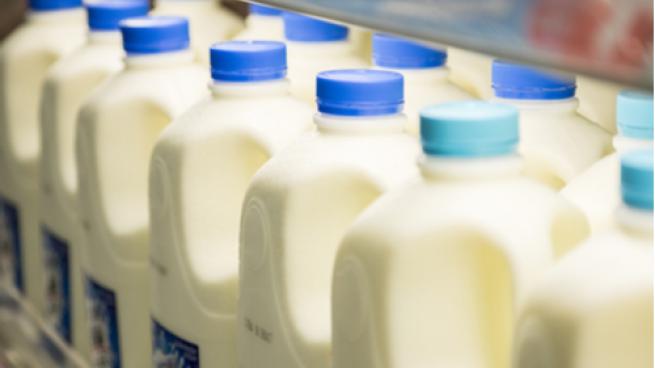 milk jugs in a store